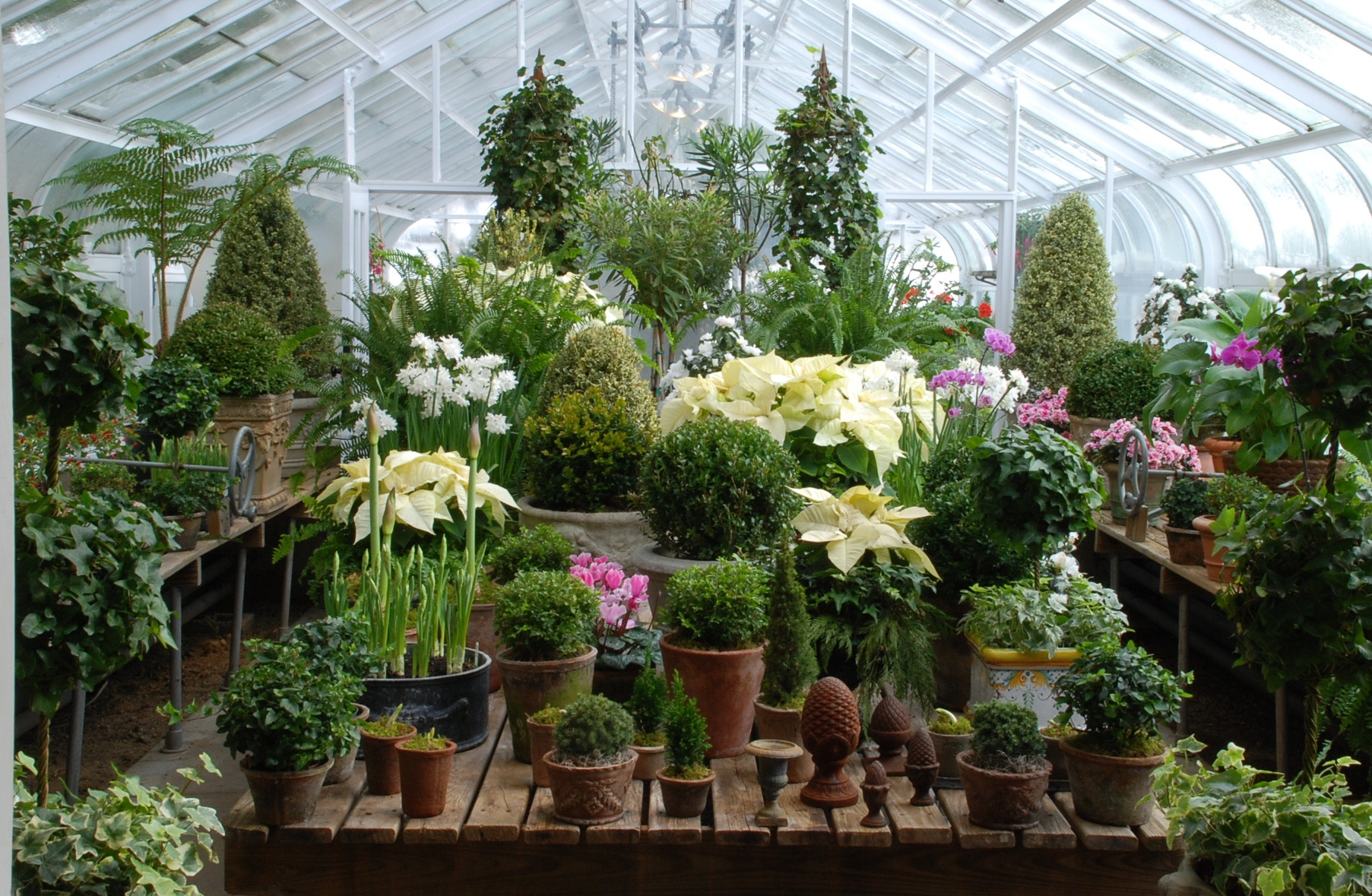 Indoor gardening greenhouse 12 providence landscapes for Indoor gardening videos